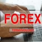 Forex-Terminology-For-Beginners