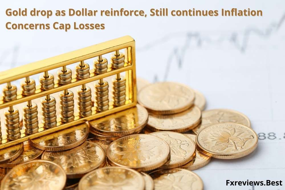 Gold drop as dollar reinforce Still continues Inflation Concerns Cap Losses