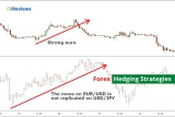 Top Forex Hedging Strategies and its Dynamics