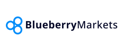 Blueberry Markets Overview