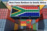 Top 6 best Forex Brokers in South Africa